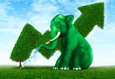Приложение Сбербанк Инвестор – для желающих заработать больше